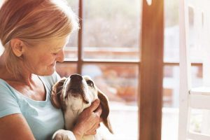 Pets can significantly improve mental health